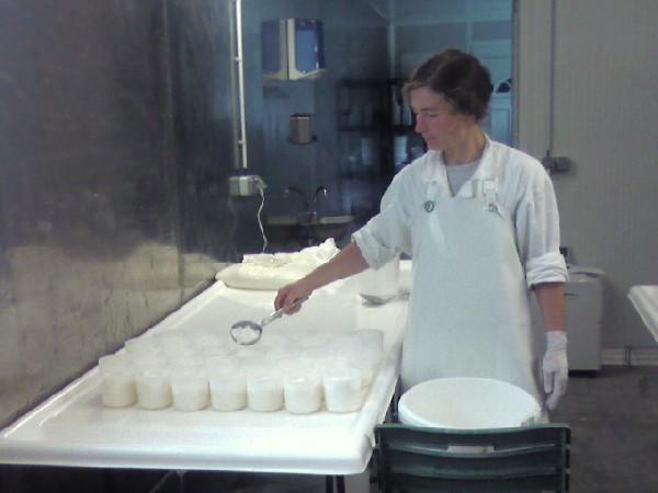 Le moulage des palets se fait à la louche, délicatement. Il faut 3/4 de litre de lait par fromage. Le lendemain les fromages sont retournés et salés, le surlendemain ils sont placés sur des grilles et l'autre face est salée, puis l'affinage commence.